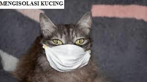 Mengisolasi Kucing